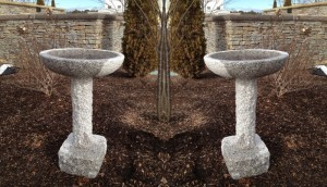 Bird_Bath_Straight-1000x575