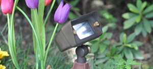 OmegaPro OB Accent Light OB-2